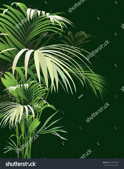 Tropical Plants Vector Drawing Nature Stock Vector