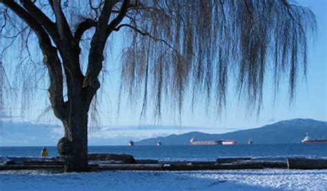 A Guide to January Weather in Vancouver, Whistler, and