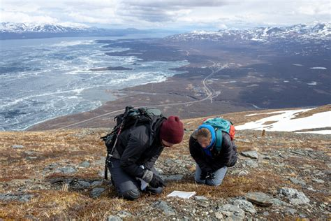 Arctic Botany Research Internships — Climate Impacts